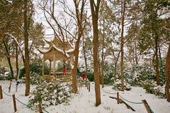 Zhengzhou people& x27; s Park Stock Foto
