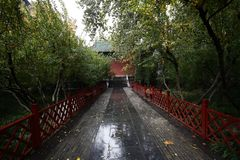 Zhengzhou people& x27; s Park royalty-vrije stock fotografie