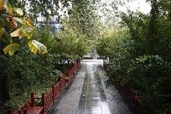 Zhengzhou people& x27; s Park royalty-vrije stock foto