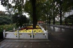 Zhengzhou people& x27; s park fotografia royalty free