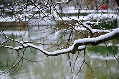 Snow Scenery in Zhengzhou People& x27;s Park royalty free stock images