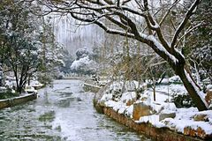 Snow Scenery in Zhengzhou People's Park royalty free stock image