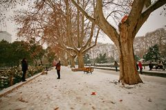 Zhengzhou people& x27;s Park. Snowy, Zhengzhou people& x27;s Park is wrapped in silver and enchanting Stock Images