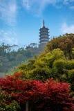 Zhenjiang Jiao Mountain Dinghui Temple miljon pagod Royaltyfria Bilder