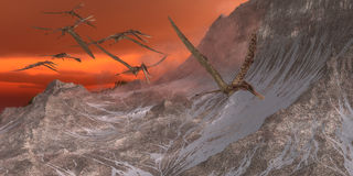 Zhenyuanopterus Flying Reptile Royalty Free Stock Images