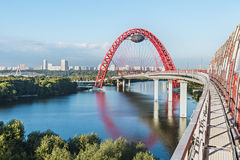 Zhivopisny桥梁是缆绳被停留的桥梁那条间距莫斯科河 图库摄影