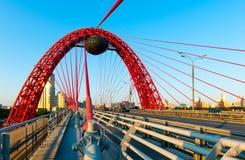 Zhivopisny suspension bridge. Landscape in Moscow, Russia Stock Photo