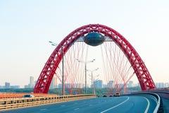 Zhivopisny upphängningbro Arkivfoton