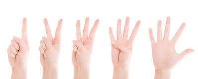 Zählung der Hände von einer bis fünf Lizenzfreie Stockfotografie