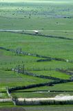 Zhongdian Grassland Stock Photography