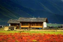 zhongdian höglands- sikt för porslindag Arkivbilder