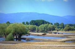 Zhrebchevo dam view,Bulgaria Royalty Free Stock Photos