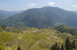 Zhuang Terraces. Scenic area view Royalty Free Stock Photos