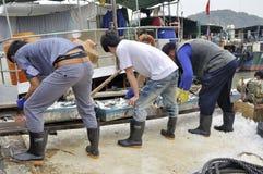Zhuhai,china: fish pier Royalty Free Stock Image