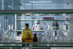 Medic in laboratory Stock Images