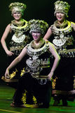 Zhuhai Han Sheng Art Troupe. Spring Festival 2013. Dublin Stock Photo
