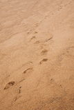 Zhuhai Zhong Ling Kok Tsui seafood lovers pier footprints on the beach sand Stock Photography