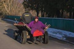 Zhytomyr, Украина - 3-ье октября 2015: старшая женщина сидя на старой нарисованной лошади стоковая фотография