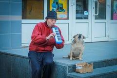 ZHYTOMYR, DE OEKRAÏNE - 23 SEP, 2013 Mens die met een laag inkomen de harmonika spelen in Zhytomyr, de Oekraïne op 23 September,  Stock Afbeeldingen