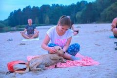 Zhytomyr, Ucrania - 9 de agosto de 2015: El perro perdido perturba yoga practicante en la salida del sol Foto de archivo libre de regalías