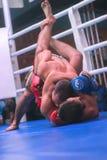 Zhytomyr, Ucrania - 2 de septiembre de 2016: Los boxeadores engancharon a la acción durante el torneo de eliminación del boxeo Fotografía de archivo libre de regalías