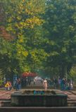 Zhytomyr Ukraina - Augusti 14, 2017: Folket som tycker om sommaren på Gagarin ` s, parkerar Fotografering för Bildbyråer