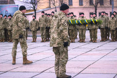 Zhytomyr Ukraina, Luty, - 26, 2016: Militarna militarna parada, rzędy żołnierze Fotografia Royalty Free