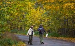 Zhytomyr Ukraina - Oktober 19, 2015: män som fotvandrar i skogen för champinjoner Royaltyfri Foto