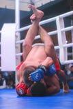 Zhytomyr, Ukraine - 2 septembre 2016 : Les boxeurs se sont engagés dans l'action pendant le tournoi d'élimination de boxe Image stock