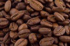 ziarna kawy Zdjęcia Stock