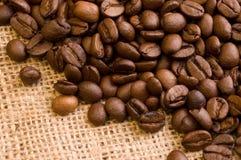 ziarna kawy Fotografia Royalty Free