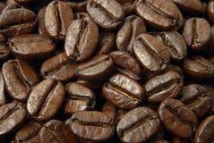 ziarna kawy Zdjęcie Stock