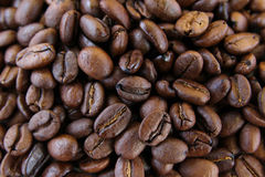 ziarna kawy, konsystencja Obrazy Stock