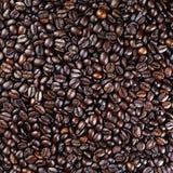 ziarna kawy, konsystencja Obraz Stock