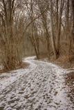 Ziarno do zmielenia młynu ślad z śniegiem Obraz Stock