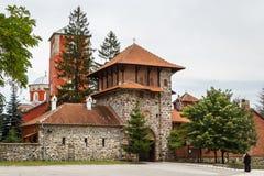 Zica monasteru kompleks fotografia royalty free