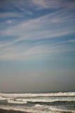 Zicatela海滩和老鹰在天空在波浪埃斯孔迪多港 库存照片