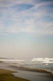 Zicatela海滩和老鹰在天空埃斯孔迪多港墨西哥 免版税图库摄影