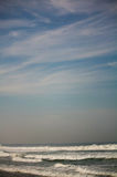 Zicatela beach and eagle in the sky over waves Puerto Escondido. Mexico Stock Photo