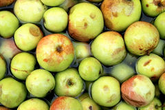 Zideräpfel stockbilder