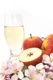 Zider und Apfel - Nochlebensdauer Stockfoto