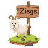 ziege的动物字母表信件z 库存照片
