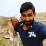 Ziege, die Boy& x27 riecht; s-Gesicht Stockfotografie