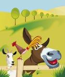 Ziege, Hahn und Esel auf Feld Stockbilder