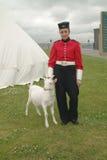 Ziege-Maskottchen, Fort Kingston, Ontario Kanada. Lizenzfreies Stockbild