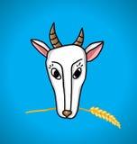 Ziege mit den Ohren des Weizens im Mund Stockbilder