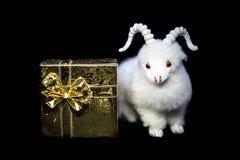Ziege oder Schafe mit Geschenkbox Stockfoto