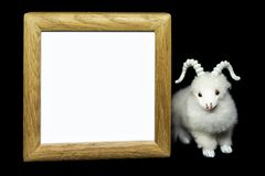 Ziege oder Schafe mit leerem hölzernem Rahmen Lizenzfreie Stockbilder