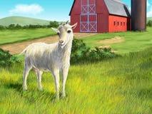 Ziege und Bauernhof Lizenzfreie Stockfotografie