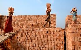 Ziegelstein-Arbeitskräfte Stockbilder